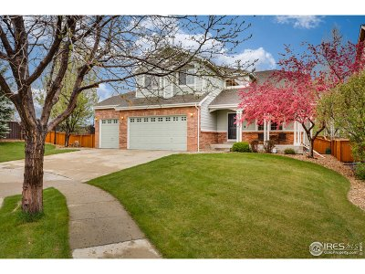 Broomfield Single Family Home For Sale: 14393 Jared Ct