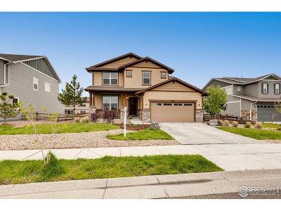 Erie Single Family Home For Sale: 650 Benton Ln