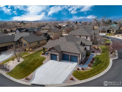 Loveland Single Family Home For Sale: 370 Meadowsweet Cir