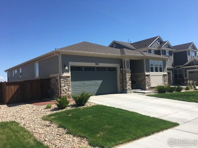 Thornton Single Family Home For Sale: 7019 E 123rd Pl