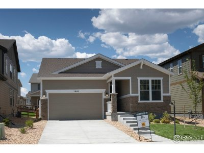 Loveland Single Family Home For Sale: 2909 Pawnee Creek Dr