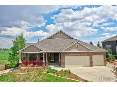Broomfield Single Family Home For Sale: 14068 Willow Wood Ct