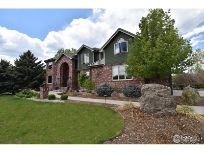 Niwot Single Family Home For Sale: 7719 Crestview Ln