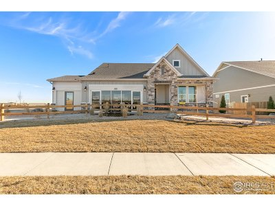 Thornton Single Family Home For Sale: 15619 Syracuse Way