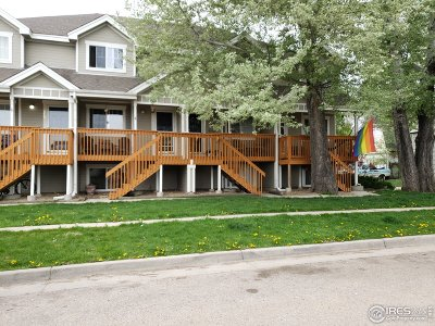 Berthoud Condo/Townhouse For Sale: 313 Turner Ave