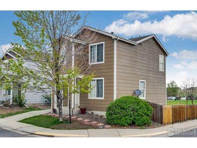 Thornton Single Family Home For Sale: 10100 Eudora Ct