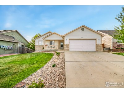 Greeley Single Family Home For Sale: 3011 45th Ave