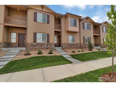 Longmont Condo/Townhouse For Sale: 1511 Kansas Ave
