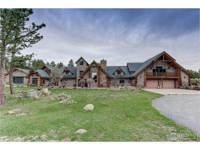 Nederland Single Family Home For Sale: 1260 Twin Sisters Rd