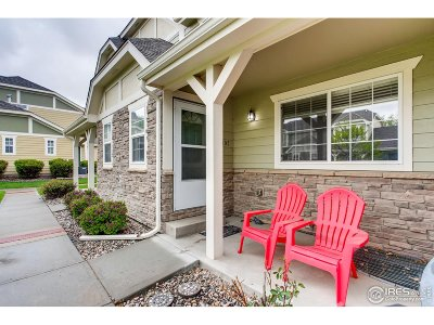 Fort Collins Condo/Townhouse For Sale: 1014 Andrews Peak Dr #B105