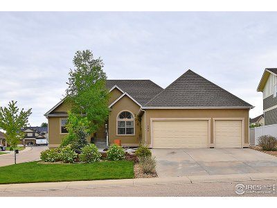 Greeley Single Family Home For Sale: 500 56th Ave