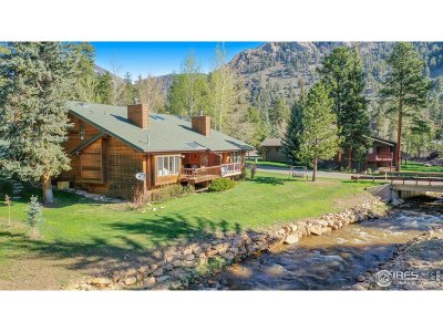 Estes Park Condo/Townhouse For Sale: 695 Homestead Ln #A