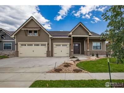 Berthoud Single Family Home For Sale: 2996 Heron Lakes Pkwy