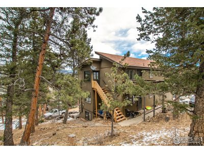 Estes Park Condo/Townhouse For Sale: 517 Driftwood Ave #3