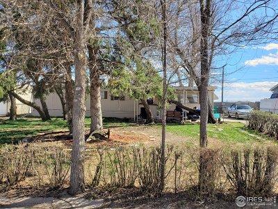 Greeley Single Family Home For Sale: 3910 Glacier Dr