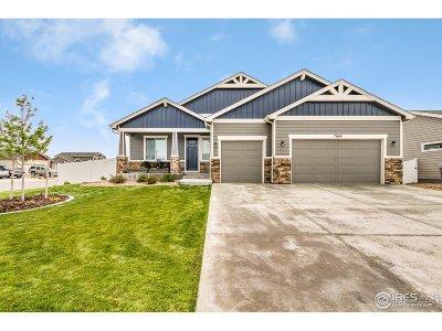 Wellington Single Family Home For Sale: 7080 Pettigrew St