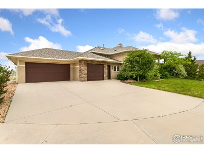 Fort Collins Single Family Home For Sale: 3302 Buteos Ct
