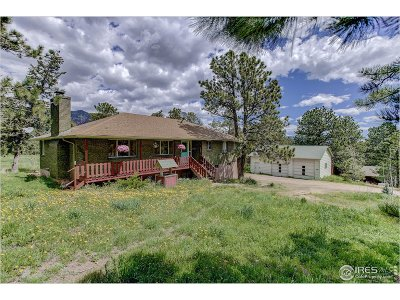 Lyons Single Family Home For Sale: 841 Estes Park Estates Dr