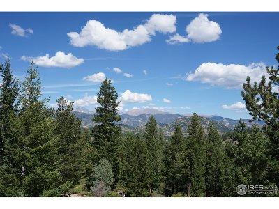 Estes Park Residential Lots & Land For Sale: 3 Dollar Lake, Lot 3 Rd