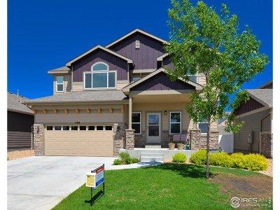 Loveland Single Family Home For Sale: 908 Antila Ave