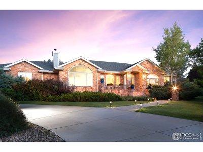 Niwot Single Family Home For Sale: 7180 Longview Dr