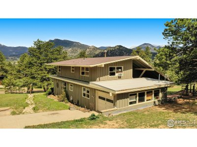 Estes Park Single Family Home For Sale: 1230 Meadow Ln
