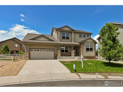 Loveland Single Family Home For Sale: 3347 Wray Ct