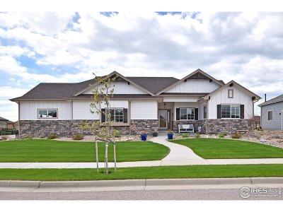 Loveland Single Family Home For Sale: 3562 Angora Dr