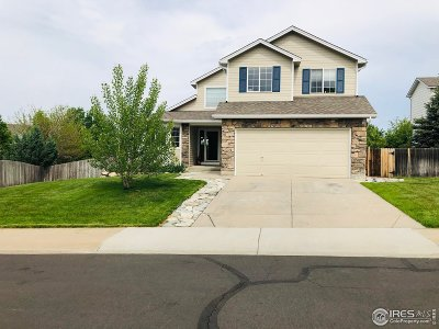 Fort Collins Single Family Home For Sale: 6908 Sedgwick Ct