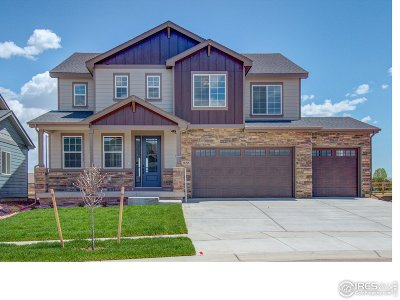 Fort Collins Single Family Home For Sale: 920 Tod Dr