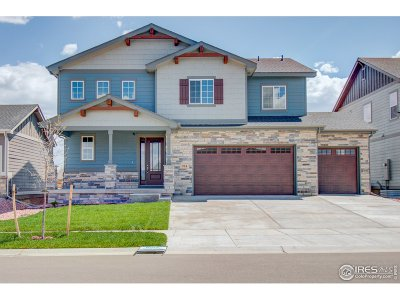 Fort Collins Single Family Home For Sale: 914 Tod Dr