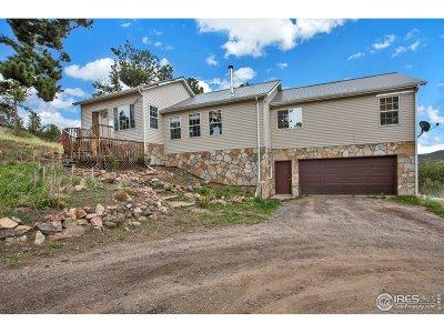 Nederland Single Family Home For Sale: 1 Navajo Trl