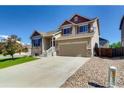 Johnstown Single Family Home For Sale: 505 Settler Way
