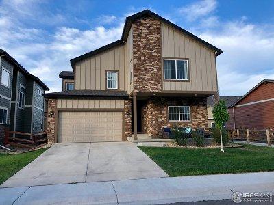 Loveland Single Family Home For Sale: 640 Newton Dr