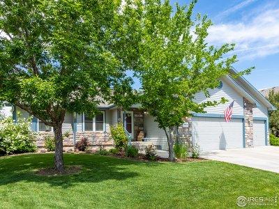 Firestone Single Family Home For Sale: 9683 Bramwood St