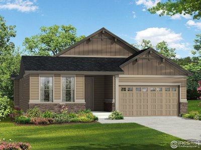 Fort Collins Single Family Home Active-Backup: 4526 Fox Grove Dr