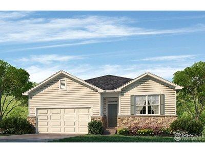 Firestone Single Family Home For Sale: 5251 Sandy Ridge Ave