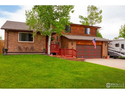 Longmont Single Family Home For Sale: 2238 Vivian St