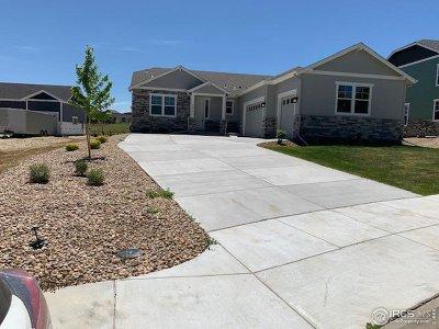 Erie Single Family Home For Sale: 2851 Eagle Cir