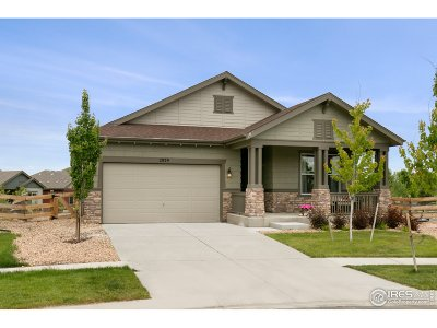 Longmont Single Family Home For Sale: 2029 Sicily Cir