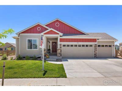 Berthoud Single Family Home For Sale: 521 Mount Rainier St