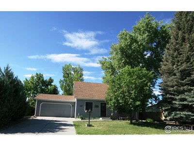 Loveland Single Family Home Active-Backup: 2844 Snowberry Pl