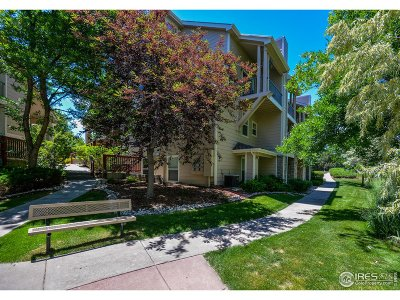 Fort Collins Condo/Townhouse For Sale: 3945 Landings Dr #1