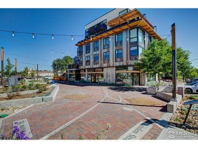 Fort Collins Condo/Townhouse For Sale: 401 Linden St #310