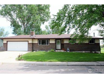 Brush Single Family Home For Sale: 913 Krista Kort