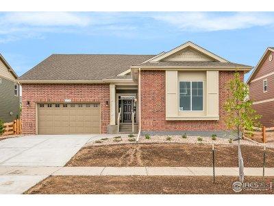 Arvada Single Family Home For Sale: 8753 Crestone St