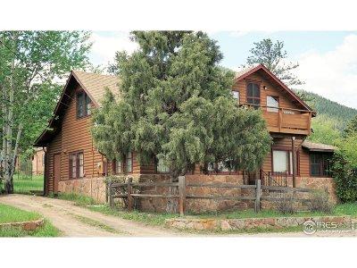 Estes Park Single Family Home For Sale: 960 Riverside Dr #9