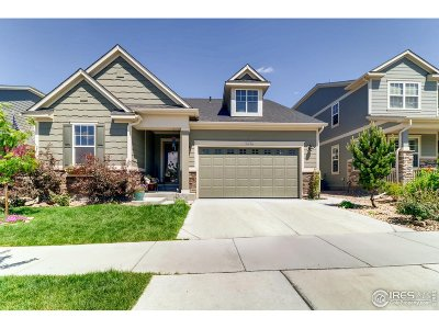 Longmont Single Family Home For Sale: 1096 Little Grove Ct