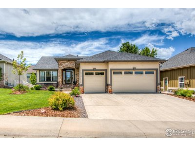 Greeley Single Family Home For Sale: 217 56th Ave