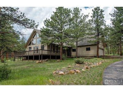 Estes Park Single Family Home For Sale: 851 Black Canyon Dr